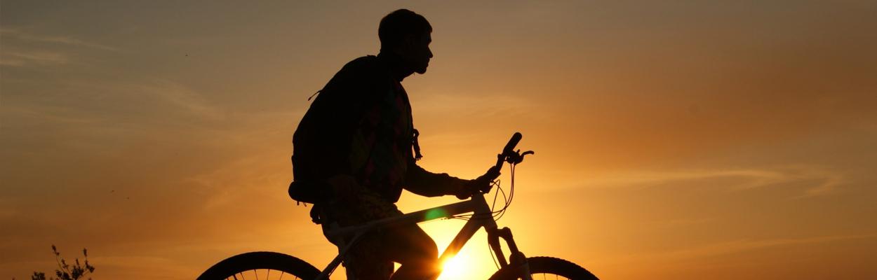 Van stadsfiets tot mountainbike en van elektrische fiets tot racefiets.